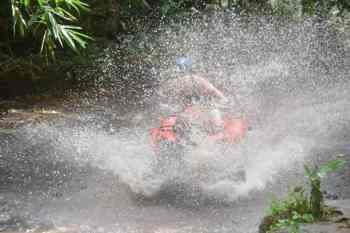 Bali Taro ATV Ride Adventure Tours - Gallery 161118