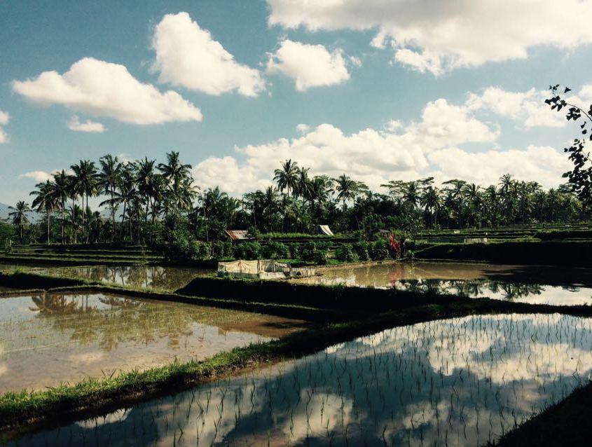 meteo Bali Agosto