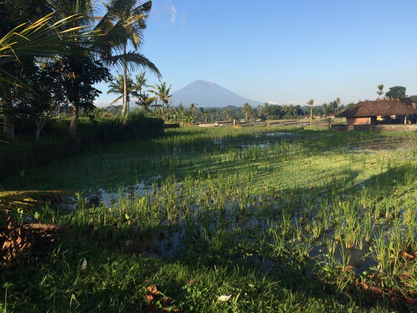 meteo Bali Ubud
