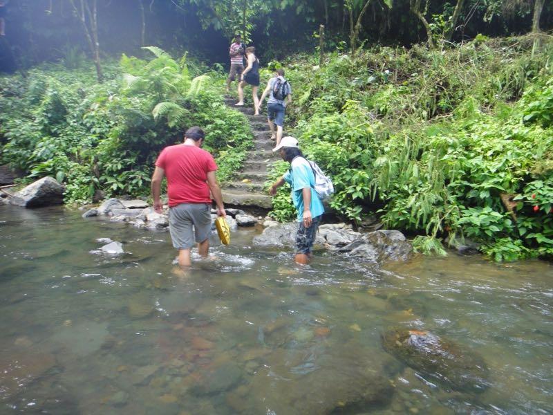 Trekking nella jungla