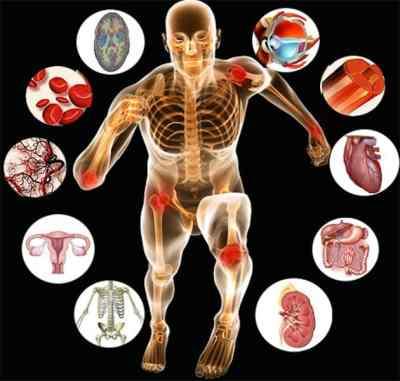 CIBTAC anatomy and physiology Diploma course in Sanur, Bali
