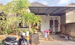 Cheap housing for rent