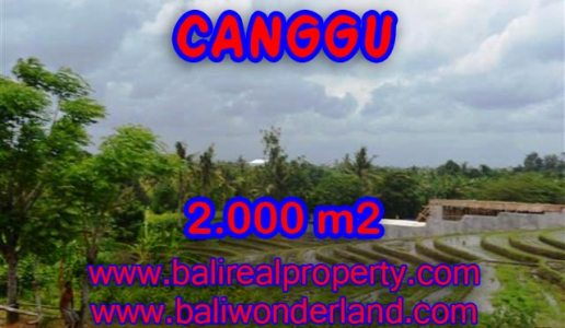 Land in Canggu for sale, Outstanding view in Canggu Babakan Bali – TJCG133