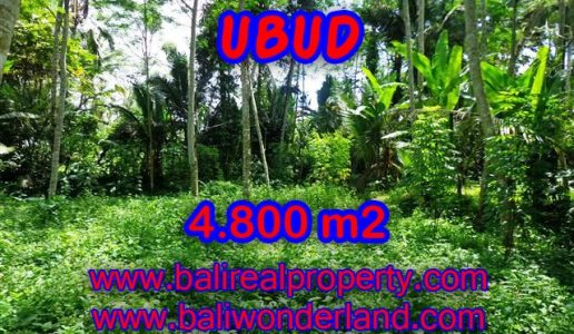 Land for sale in Ubud Bali, Unbelievable view in Ubud Tegalalang – TJUB382