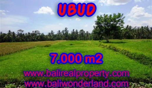 Magnificent Property for sale in Bali, land for sale in Ubud Bali – TJUB381