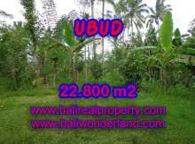 Land in Bali for sale, extraordinary view in Ubud Tegalalang – TJUB409