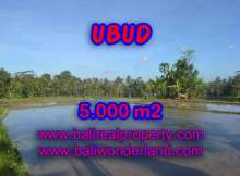 Land for sale in Bali, spectacular view in Ubud Bali – TJUB413