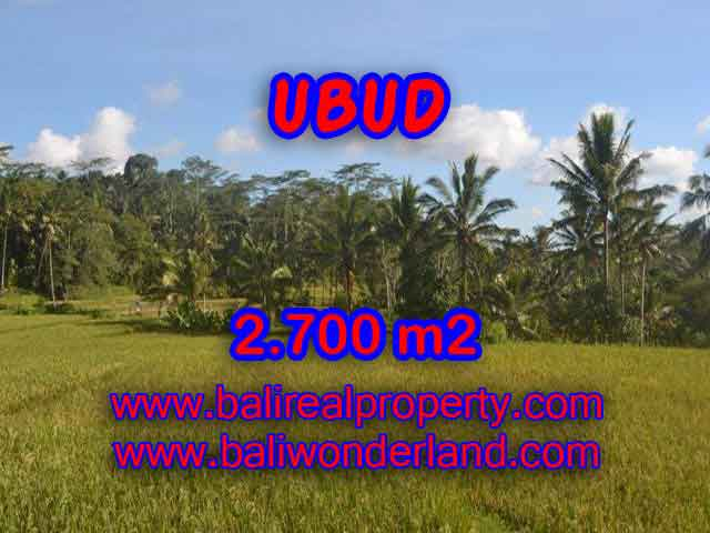 Land in Bali for sale, Stunning view in Ubud Bali – TJUB414