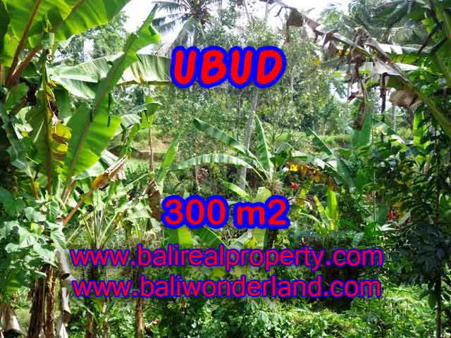 Land in Bali for sale, Outstanding view in Ubud Center Bali – TJUB415
