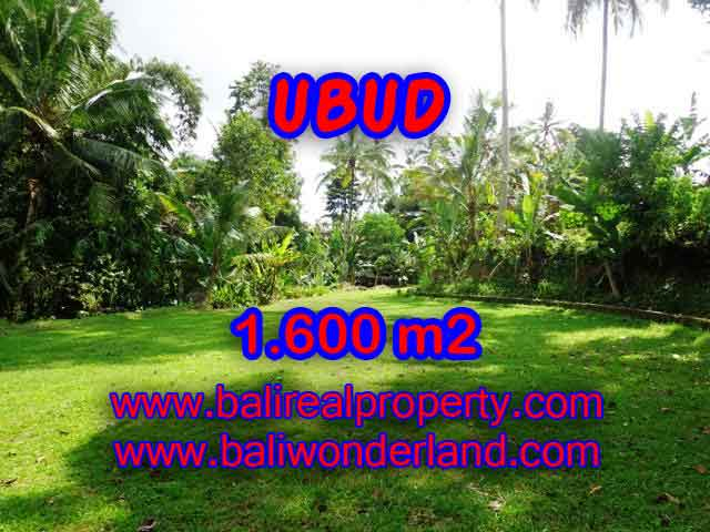 Stunning Land for sale in Bali, Rice fields and river view in Ubud Bali - TJUB416