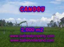 Land for sale in Bali, exceptional view in Canggu Cemagi – TJCG140