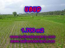 Land for sale in Ubud, Magnificent view in Ubud Center Bali – TJUB398