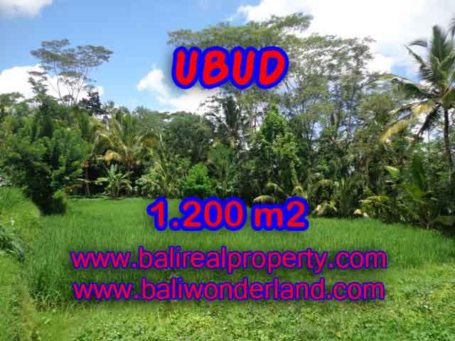 Land in Bali for sale, astounding view in Ubud Bali – TJUB404