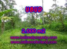 Magnificent Land for sale in Bali, Garden view in Ubud Tegalalang Bali – TJUB406