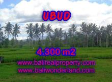 Astounding Property in Bali for sale, Paddy and mountain view on river side land in Ubud Bali – TJUB370
