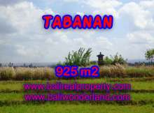 Interesting Land for sale in Tabanan Bali, paddy fields, mountain and ocean view in Tabanan selemadeg– TJTB135