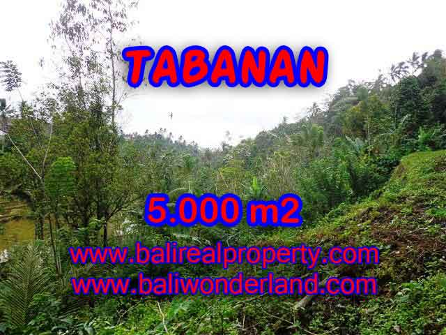 Land in Tabanan for sale, Outstanding view in Tabanan selemadeg Bali – TJTB139