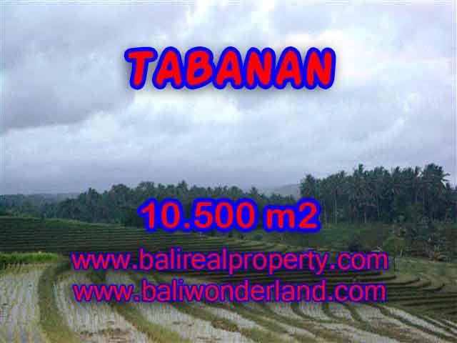 Stunning Land for sale in Bali, mountain, river, rice field, and beach view in Tabanan Bali - TJTB095
