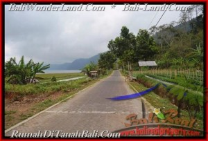 Magnificent 52,000 m2 LAND FOR SALE IN TABANAN BALI TJTB164