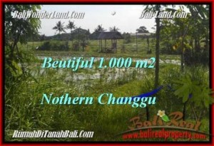 Exotic 1,000 m2 LAND SALE IN Canggu Batu Bolong BALI TJCG180