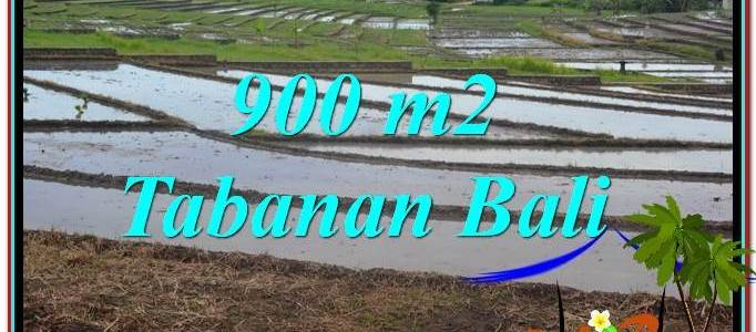 FOR SALE Affordable 900 m2 LAND IN TABANAN BALI TJTB308