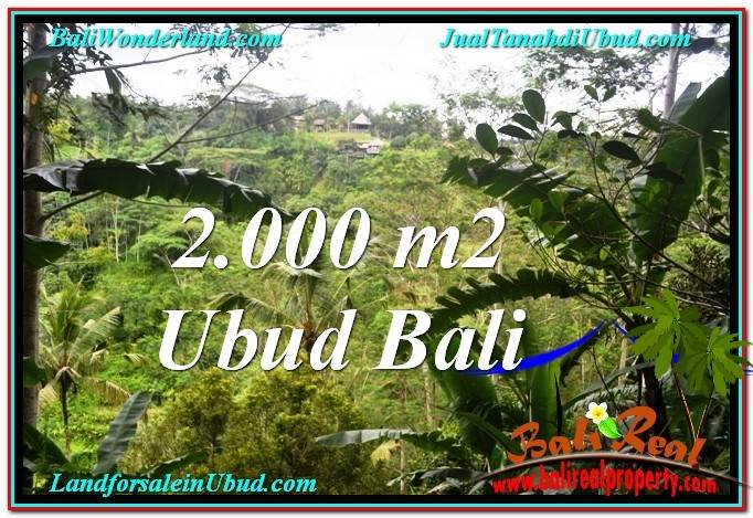 FOR SALE Magnificent 2,000 m2 LAND IN UBUD BALI TJUB573