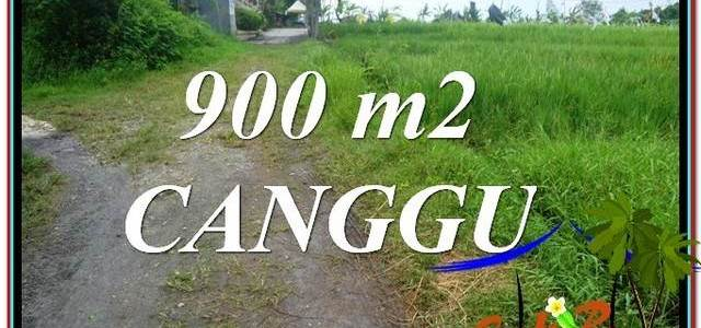 Magnificent 900 m2 LAND IN CANGGU FOR SALE TJCG215