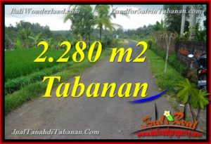 Affordable PROPERTY 2,280 m2 LAND SALE IN TABANAN TJTB374