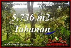 Magnificent PROPERTY Tabanan Selemadeg 5,736 m2 LAND FOR SALE TJTB376