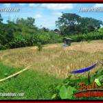 Beautiful PROPERTY LAND FOR SALE IN CANGGU TJCG226