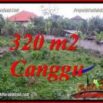 Magnificent LAND SALE IN CANGGU PERERENAN TJCG231