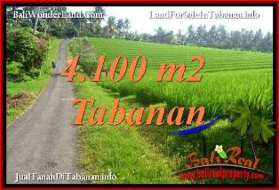 FOR SALE 4,100 m2 LAND IN TABANAN BALI TJTB394