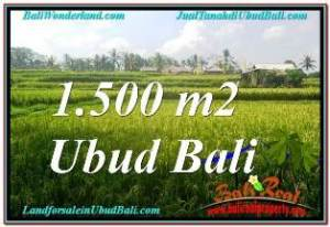 Beautiful 1,500 m2 LAND FOR SALE IN UBUD TEGALALANG TJUB667