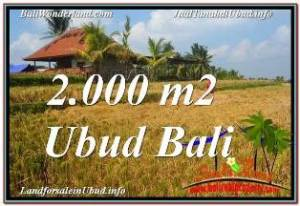 FOR SALE Magnificent PROPERTY 2,000 m2 LAND IN UBUD TEGALALANG TJUB669
