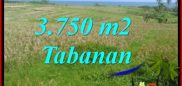 Cheap property 3,750 m2 LAND FOR SALE IN TABANAN TJTB382