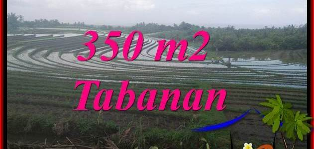 Magnificent PROPERTY TABANAN SELEMADEG LAND FOR SALE TJTB386