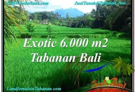 Affordable PROPERTY LAND IN Tabanan Penebel FOR SALE TJTB306