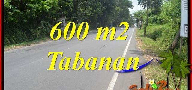 Affordable Land sale in Tabanan Kerambitan Bali TJTB401