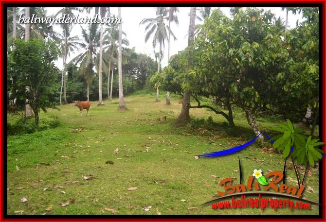 Tabanan Selemadeg Bali Land for sale TJTB403