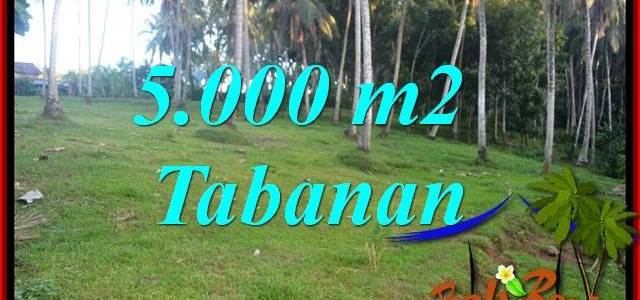 FOR sale Beautiful 5,000 m2 Land in Tabanan Bali TJTB408