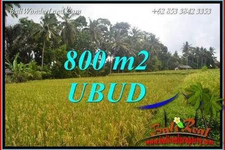 FOR sale Affordable Property Land in Ubud TJUB707