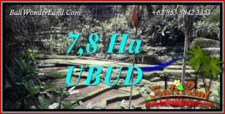 Beautiful 78,000 m2 Land in Ubud Payangan for sale TJUB741