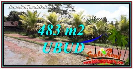 Magnificent PROPERTY Ubud Pejeng 483 m2 LAND FOR SALE TJUB752