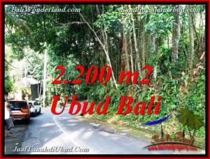 FOR SALE Exotic LAND IN SENTRAL UBUD BALI TJUB768