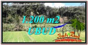 1,200 m2 LAND FOR SALE IN UBUD BALI TJUB746