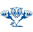 Gili Cat Logo