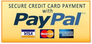 Secure Credit Card Payment With Paypal