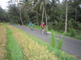 sodexo, indonesia, sodexo indonesia, bali, incentive, tours, bali incentive, incentive tours, bali incentive tours, afternoon cycling