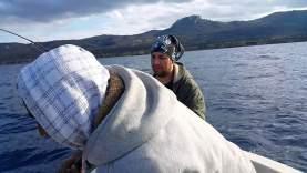 Balon Balığı Avı