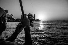 En etkili kofana avı taktiği